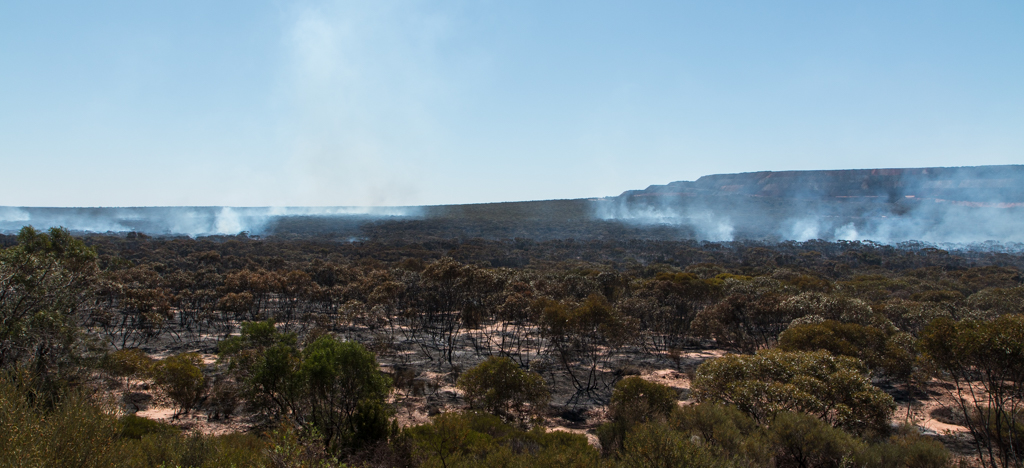 Bush fire in Midgee, South Australia